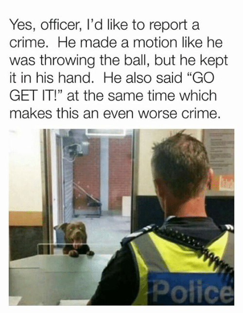 """Crime, Dank, and Time: Yes, officer, l'd like to reporta  crime. He made a motion like he  was throwing the ball, but he kept  it in his hand. He also said """"GO  GET IT!"""" at the same time which  makes this an even worse crime.  ta"""