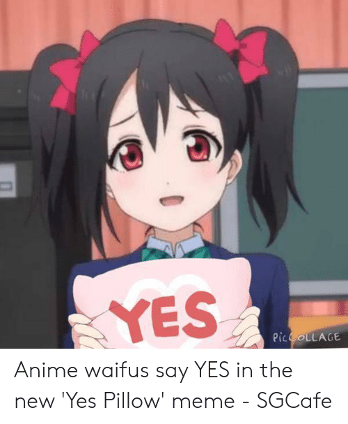 Waifu Meaning: YES  Pic COLLAGE Anime waifus say YES in the new 'Yes Pillow' meme - SGCafe