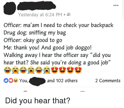"Thank You, Good, and Okay: Yesterday at 6:24 PM ii  Officer: ma'am I need to check your backpack  Drug dog: sniffing my bag  Officer: okay good to go  Me: thank you! And good job doggo!  Walking away I hear the officer say ""did you  hear that? She said you're doing a good job  You,  and 102 others  2 Comments Did you hear that?"
