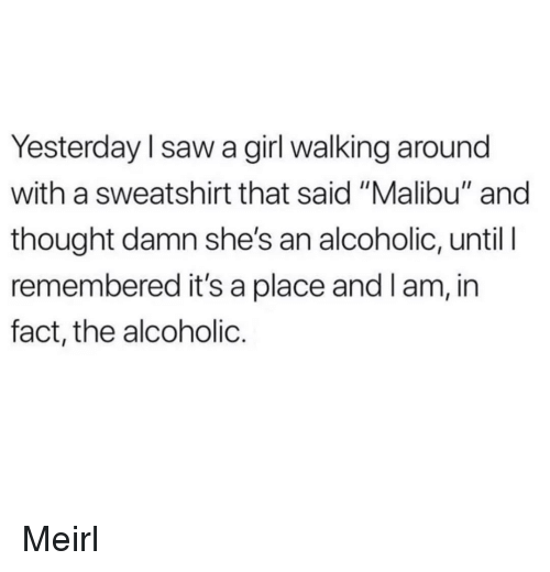 "malibu: Yesterday l saw a girl walking around  with a sweatshirt that said ""Malibu"" and  thought damn she's an alcoholic, until I  remembered it's a place and l am, in  fact, the alcoholic. Meirl"