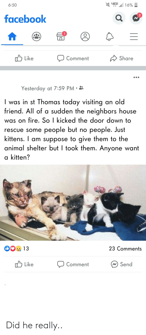 Facebook, Fire, and Animal: YG 16%  6:50  facebook  ל Like  Share  Comment  Yesterday at 7:59 PM • 3  | was in st Thomas today visiting an old  friend. All of a sudden the neighbors house  was on fire. So I kicked the door down to  rescue some people but no people. Just  kittens. I am suppose to give them to the  animal shelter but I took them. Anyone want  a kitten?  1131  23 Comments  13  ,ל  W Send  Like  Comment  || Did he really..