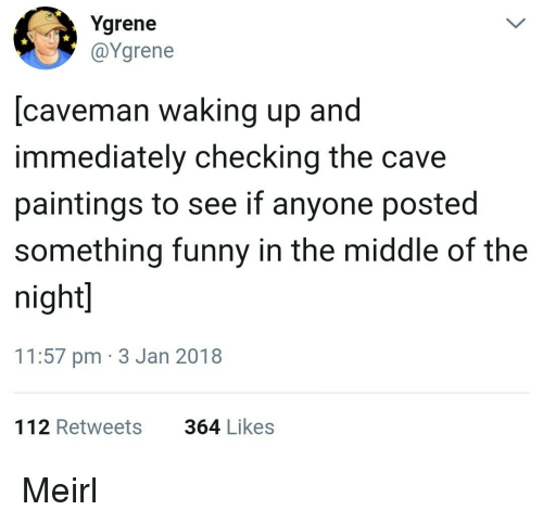 the cave: Ygrene  @Ygrene  [caveman waking up and  immediately checking the cave  paintings to see if anyone posted  something funny in the middle of the  night  11:57 pm 3 Jan 2018  112 Retweets  364 Likes Meirl