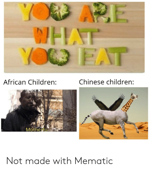 Chinese: YOD APE  WHAT  YO EAT  Chinese children:  African Children:  Motherfu Not made with Mematic