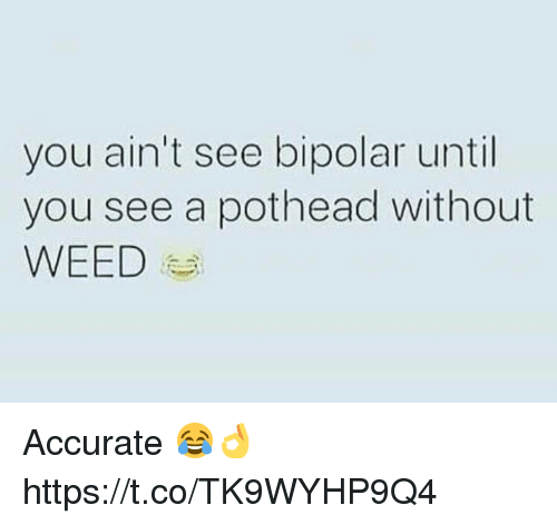 Weed, Bipolar, and You: you ain't see bipolar until  you see a pothead without  WEED Accurate 😂👌 https://t.co/TK9WYHP9Q4