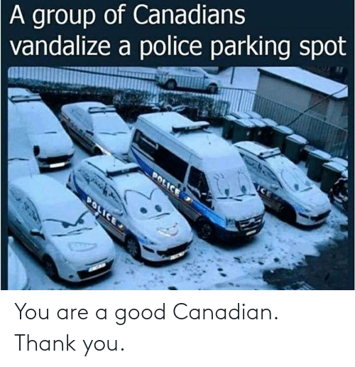 Thank You: You are a good Canadian. Thank you.