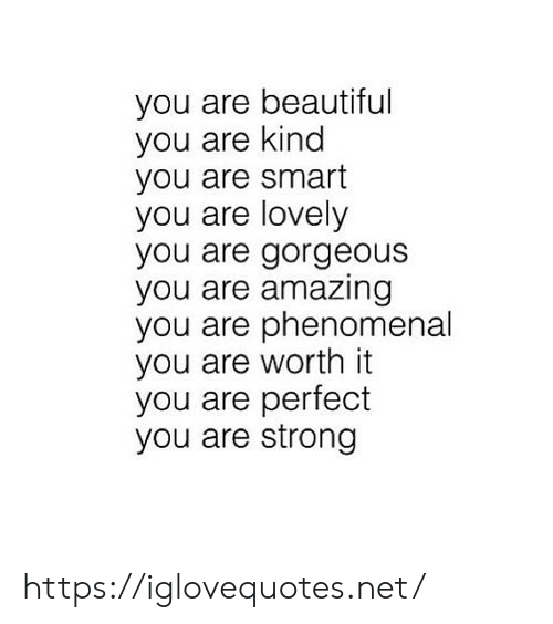 Beautiful, Phenomenal, and Gorgeous: you are beautiful  you are kind  you are smart  you are lovely  you are gorgeous  you are amazing  you are phenomenal  you are worth it  you are perfect  you are strong https://iglovequotes.net/