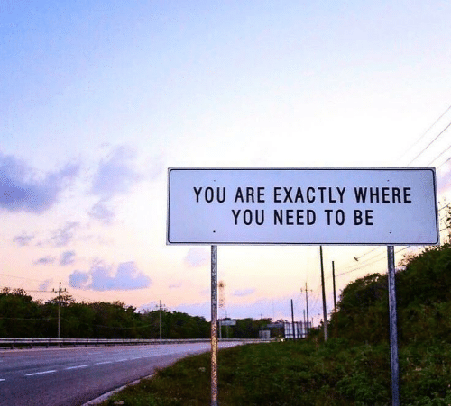 You, Exactly, and  Need: YOU ARE EXACTLY WHERE  YOU NEED TO BE