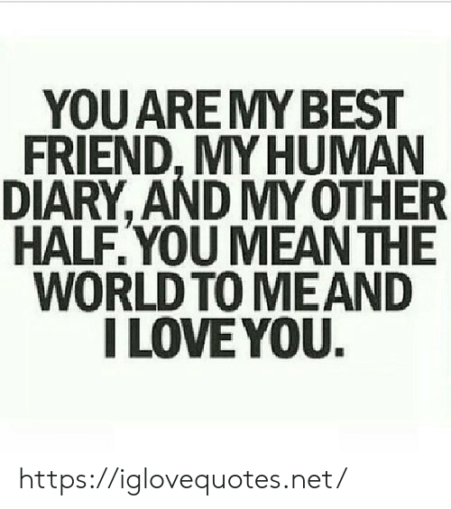 Diary: YOU ARE MY BEST  FRIEND, MY HUMAN  DIARY, AND MY OTHER  HALF.YOU MEAN THE  WORLD TO MEAND  I LOVE YOU. https://iglovequotes.net/