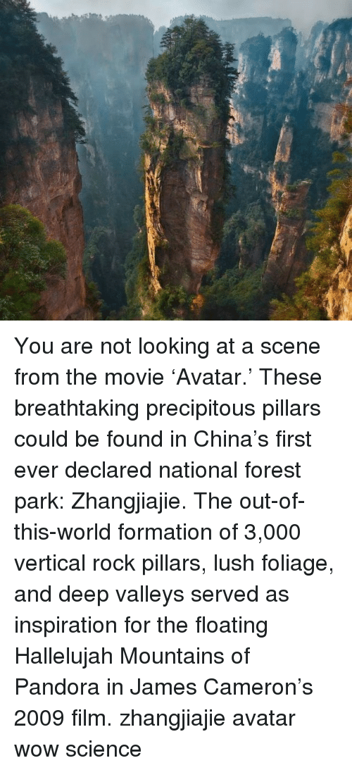 Lush: You are not looking at a scene from the movie 'Avatar.' These breathtaking precipitous pillars could be found in China's first ever declared national forest park: Zhangjiajie. The out-of-this-world formation of 3,000 vertical rock pillars, lush foliage, and deep valleys served as inspiration for the floating Hallelujah Mountains of Pandora in James Cameron's 2009 film. zhangjiajie avatar wow science