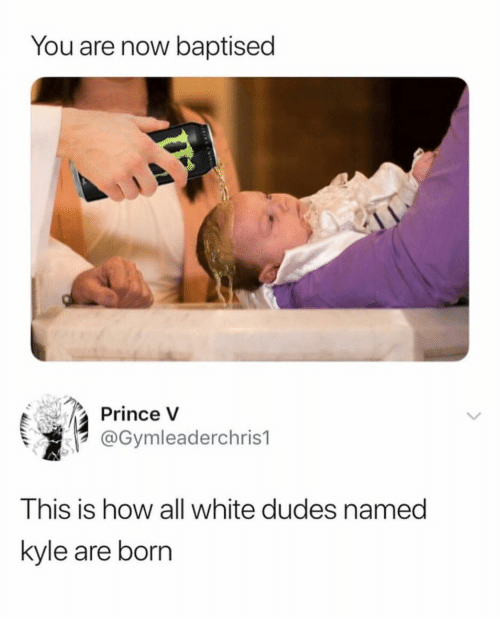 Prince, White, and How: You are now baptised  Prince V  @Gymleaderchris1  This is how all white dudes named  kyle are born