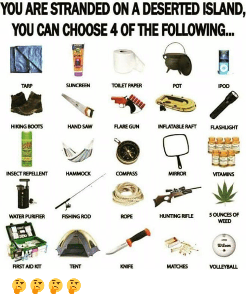 hand saw: YOU ARE STRANDED ON A DESERTED ISLAND,  YOU CAN CHOOSE 4 0F THE FOLLOWING..  TARP  TOILET PAPER  POT  POD  HIKING BOOTS  HAND SAW  FLARE GUN  INFLATABLERAFT FLASHLIGHT  INSECT REPELLENT  COMPASS  MIRROR  VITAMINS  WATER PURIFIER  FISHING ROD  HUNTING RIFLE  FIRST AID KT  TENT  KNIFE  MATCHES 🤔🤔🤔🤔