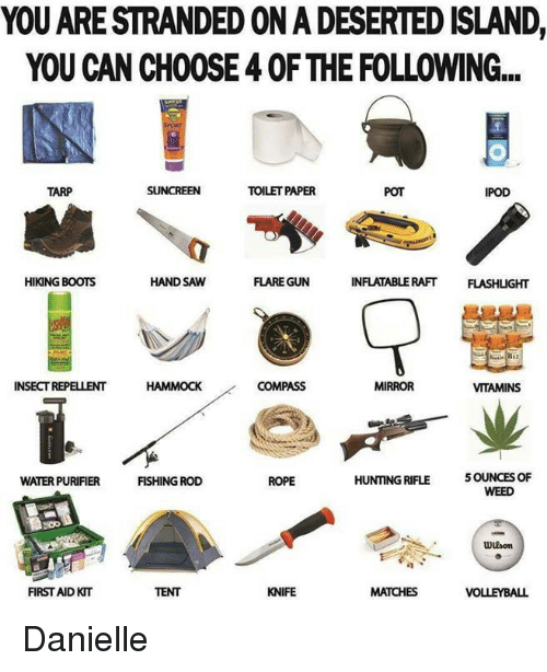 hand saw: YOU ARE STRANDED ON A DESERTED ISLAND,  YOU CAN CHOOSE 4 OF THE FOLLOWING...  TARP  TOILET PAPER  POT  IPOD  HIKING BOOTS  INFLATABLE RAFT FLASHLIGHT  HAND SAW  FLARE GUN  INSECT REPELLENT  COMPASS  MIRROR  VITAMINS  5 OUNCES OF  WEED  WATER PURIFIER  FISHING ROD  ROPE  HUNTING RIFLE  FIRST AIDKIT  TENT  KNIFE  MATCHES ♡Danielle