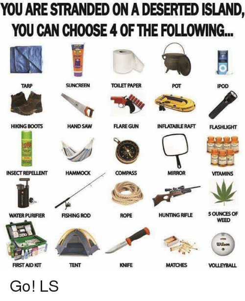 hand saw: YOU ARE STRANDEDONADESERTED ISLAND,  YOU CAN CH00SE40F THE FOLLOWING...  TOILETPAPER  TARP  IPOD  HAND SAW  FLARE GUN  INFLATABLE RAFT  FLASHLGHT  HIKING BOOTS  INSECT REPELLENT  COMPASS  MIRROR  VITAMINS  HUNTING RIFLE  5OUNCES OF  FISHING ROD  ROPE  WATERPURIFIER  WEED  Uuson  FIRST AID KT  KNIFE  MATCHES  VOLLEYBALL Go! LS