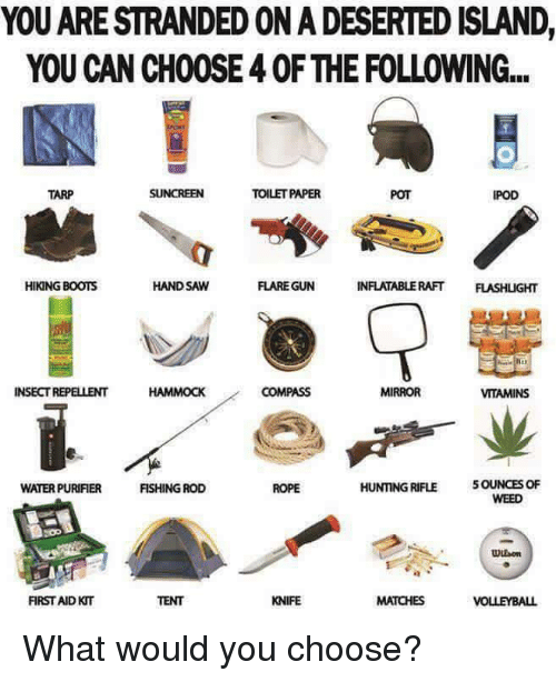 hand saw: YOU ARE STRANDEDONADESERTED ISLAND,  YOU CAN CH00SE40F THE FOLLOWING...  TOILETPAPER  TARP  IPOD  HAND SAW  INFLATABLE RAFT  FLASHLGHT  HIKING BOOTS  FLARE GUN  INSECT REPELLENT  HAMMOCK  COMPASS  MIRROR  VITAMINS  HUNTING RIFLE 5OUNCES OF  FISHING ROD  ROPE  WATERPURIFIER  WEED  FIRST AID KT  KNIFE  MATCHES  VOLLEYBALL What would you choose?