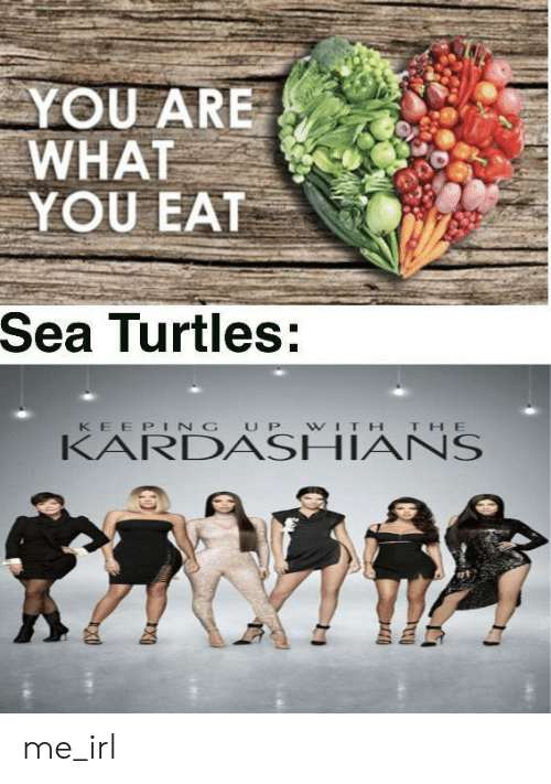 Kardashians, Keeping Up With the Kardashians, and Irl: YOU ARE  WHAT  YOU EAT  Sea Turtles:  KEEPING UP WITH THE  KARDASHIANS me_irl
