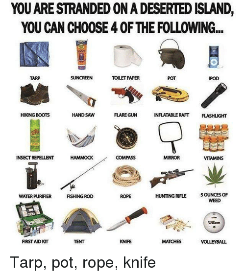 hand saw: YOU ARESTRANDEDONADESERTED ISLAND,  YOU CAN CH00SE 40F THE FOLLOWING...  TARP  TOILET PAPER  IPOD  HIKING BOOTS  HAND SAW  FLARE GUN  INFLATABLE RAFT  FLASHUGHT  COMPASS  INSECTREPELLENT  HAMMOCK  MIRROR  VITAMINS  HUNTING RIFLE 5 OUNCES OF  WATER PURIFIER  FISHING ROD  ROPE  WEED  UDilson  KNIFE  FIRST AID KIT  MATCHES  VOLLEYBALL Tarp, pot, rope, knife