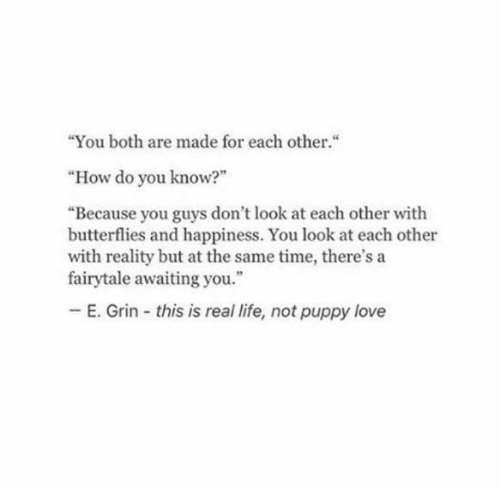 "Life, Love, and Puppy: ""You both are made for each other.""  ""How do you know?""  ""Because you guys don't look at each other with  butterflies and happiness. You look at each other  with reality but at the same time, there's a  fairytale awaiting you.""  E. Grin this is real life, not puppy love"
