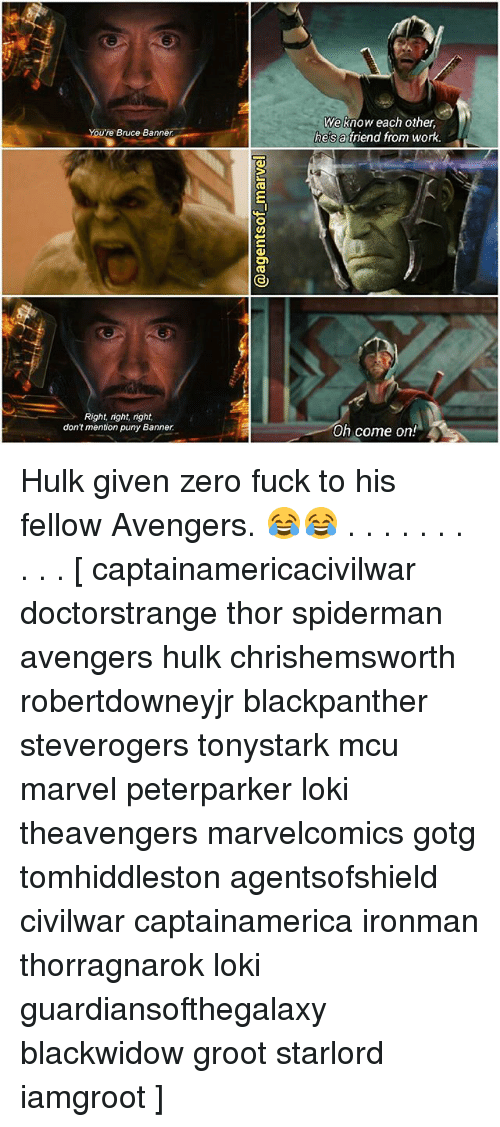 zeroes: You  Bruce Banner  Right, right, right,  don't mention puny Banner.  On  We know each other,  he's a friend from work.  Oh come on Hulk given zero fuck to his fellow Avengers. 😂😂 . . . . . . . . . . [ captainamericacivilwar doctorstrange thor spiderman avengers hulk chrishemsworth robertdowneyjr blackpanther steverogers tonystark mcu marvel peterparker loki theavengers marvelcomics gotg tomhiddleston agentsofshield civilwar captainamerica ironman thorragnarok loki guardiansofthegalaxy blackwidow groot starlord iamgroot ]
