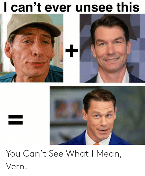 You Can: You Can't See What I Mean, Vern.