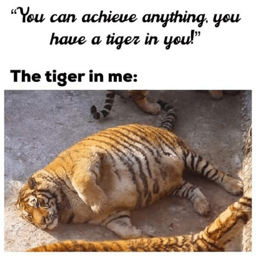 """Yo, Tiger, and Can: """"You can achicue anything. you  LC  5  haue a tiqez in yo  The tiger in me:"""