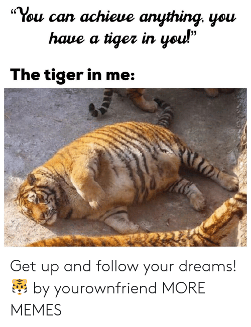 """Dank, Memes, and Target: """"You can achieue anything. yeu  (C  haue a tiger irn  The tiger in me Get up and follow your dreams! 🐯 by yourownfriend MORE MEMES"""