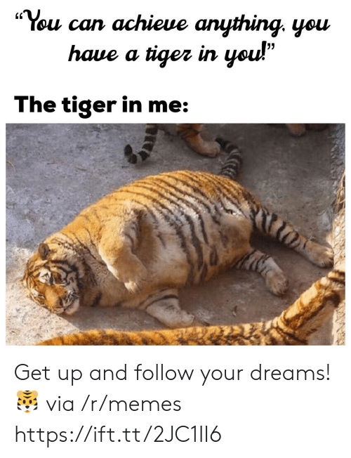 """Memes, Tiger, and Dreams: """"You can achieue anything. yeu  (C  haue a tiger irn  The tiger in me Get up and follow your dreams! 🐯 via /r/memes https://ift.tt/2JC1II6"""