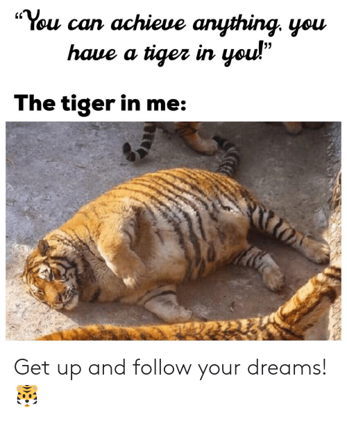 """Tiger, Dreams, and Can: """"You can achieue anything. yeu  (C  haue a tiger irn  The tiger in me Get up and follow your dreams! 🐯"""