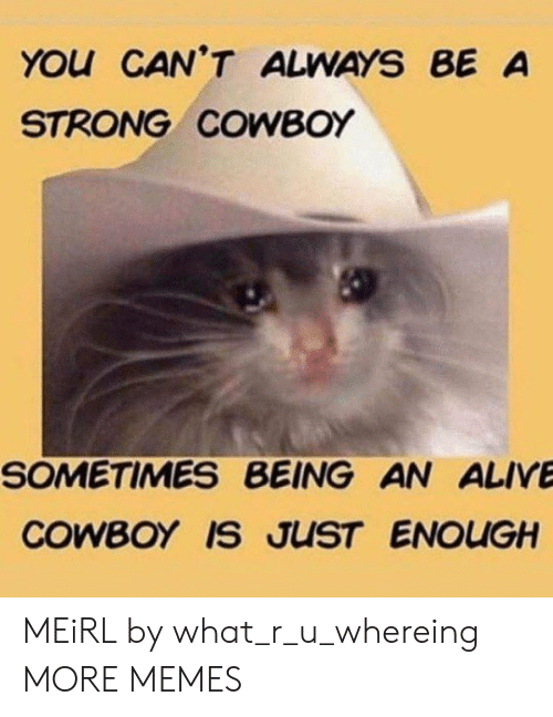 Alive, Dank, and Memes: YOu CAN'T ALWAYS BE A  STRONG COWBOY  SOMETIMES BEING AN ALIVE  COWBOY IS JUST ENOUGH MEiRL by what_r_u_whereing MORE MEMES