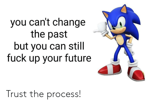 The Process: you can't change  the past  but you can still  fuck up your future Trust the process!