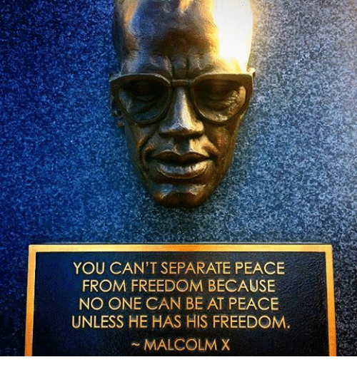 Malcolm X: YOU CAN'T SEPARATE PEACE  FROM FREEDOM BECAUSE  NO ONE CAN BE AT PEACE  UNLESS HE HAS HIS FREEDOM.  MALCOLM X