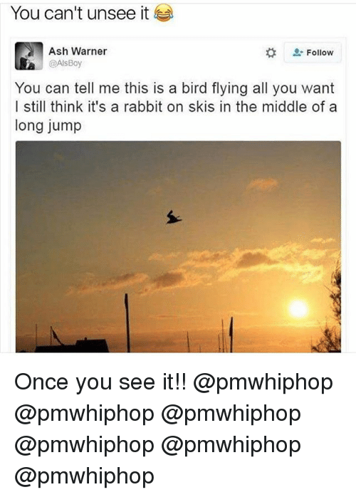 Ash, Memes, and Rabbit: You can't unsee it  Follow  Ash Warner  @Als Boy  You can tell me this is a bird flying all you want  I still think it's a rabbit on skis in the middle of a  long jump Once you see it!! @pmwhiphop @pmwhiphop @pmwhiphop @pmwhiphop @pmwhiphop @pmwhiphop
