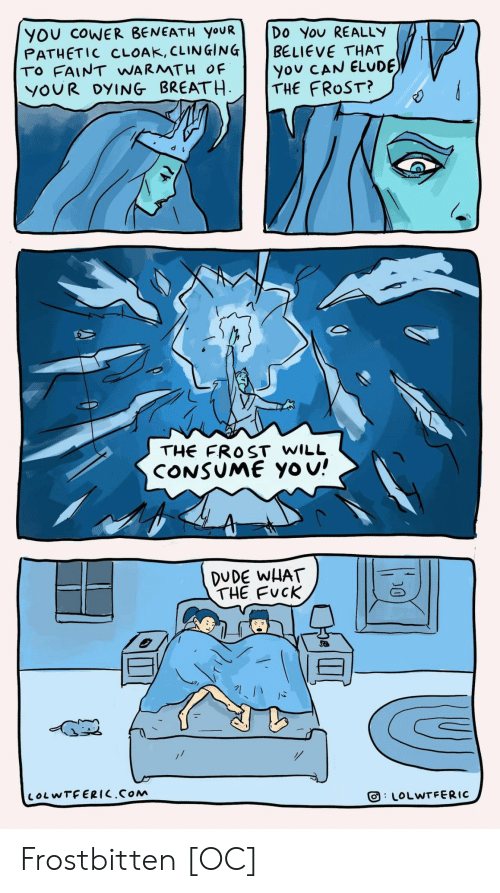 Dude, Yo, and Fuck: YOU COWER BENEATH YOUR  PATHETIC CLOAK, CLINGING  TO FAINT WARMTH OF  YOUR DYING BREATH  Do You REALLY  BELIEVE THAT  you CAN ELUDE  THE FROST?  THE FROST WILL  CONSUME Yo u!  DUDE WHAT  THE FUCK  LOLWTFERIC.COM  LOLWTFERIC  D0 Frostbitten [OC]