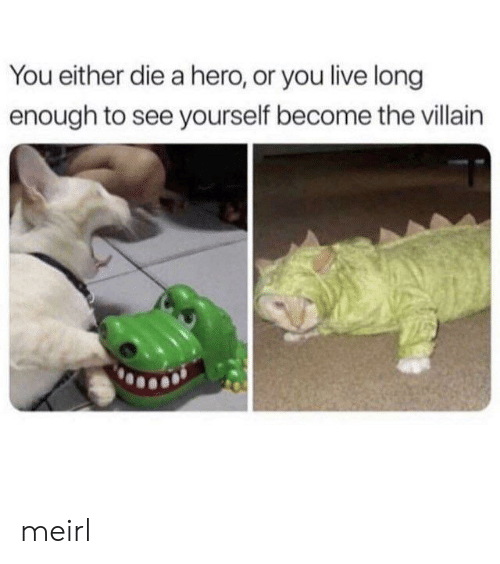 Live, Villain, and MeIRL: You either die a hero, or you live long  enough to see yourself become the villain meirl