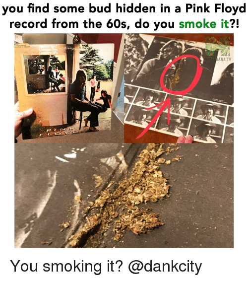 Pink Floyd, Smoking, and Weed: you find some bud hidden in a Pink Floyd  record from the 60s, do you smoke it?!  ANA.TV You smoking it? @dankcity