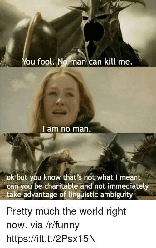 Ambiguity: You fool. No man can kill me.  l am no man.  ok but you know that's not what I meant  can you be charitable and not immediately  take adyantage of linguistic ambiguity Pretty much the world right now. via /r/funny https://ift.tt/2Psx15N