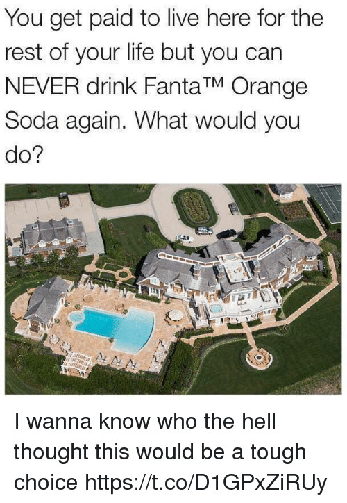 restful: You get paid to live here for the  rest of your life but you can  NEVER drink Fanta TM Orange  Soda again. What would you  do? I wanna know who the hell thought this would be a tough choice https://t.co/D1GPxZiRUy