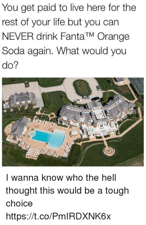 restful: You get paid to live here for the  rest of your life but you can  NEVER drink Fanta TM Orange  Soda again. What would you  do? I wanna know who the hell thought this would be a tough choice https://t.co/PmIRDXNK6x