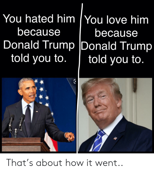 Donald Trump, Love, and Politics: You hated him You love him  because  because  Donald Trump Donald Trump  told you to.  told you to. That's about how it went..