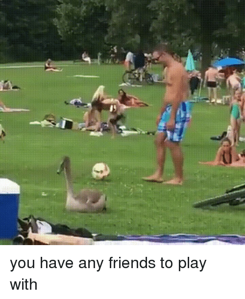 you dont have any friends: you have any friends to play with