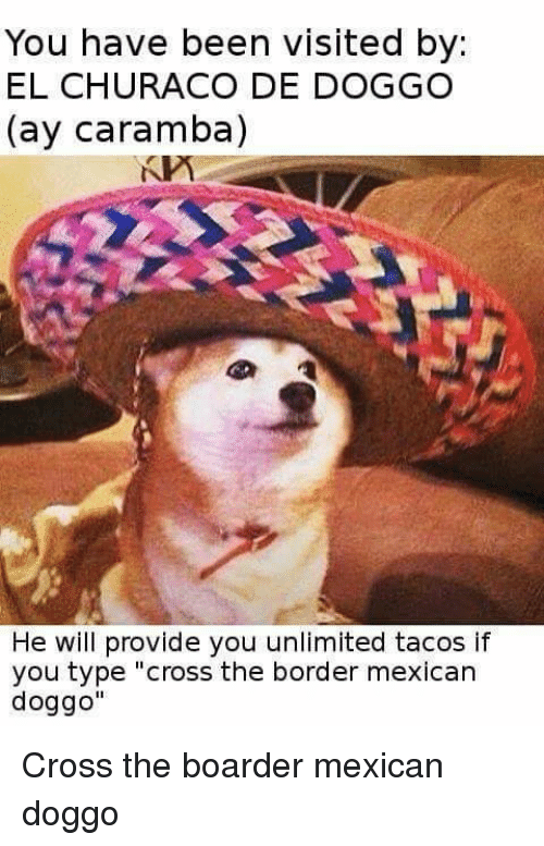 """boarders: You have been visited by  EL CHURACO DE DOGGO  (ay Caramba)  He will provide you unlimited tacos if  you type """"cross the border mexican  doggo"""" Cross the boarder mexican doggo"""