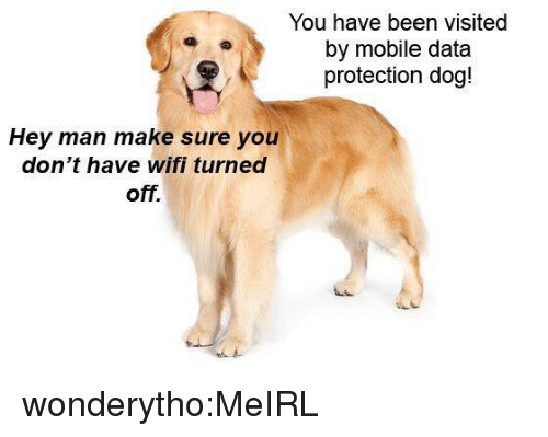 Tumblr, Blog, and Http: You have been visited  by mobile data  protection dog!  Hey man make sure you  don't have wifi turned  off. wonderytho:MeIRL