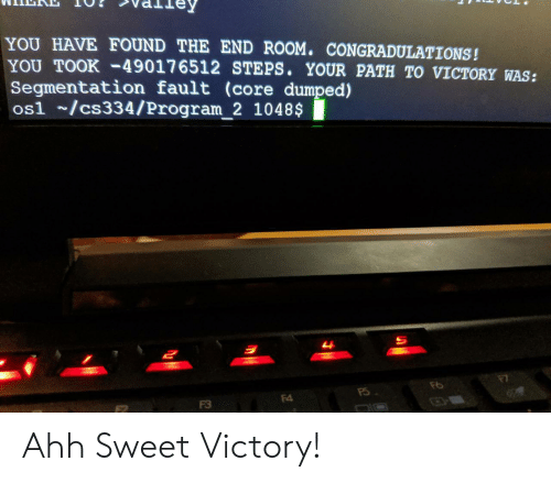 core: YOU HAVE FOUND THE END ROOM. CONGRADULATIONS!  YOU TOOK-49017 6512 STEPS. YOUR PATH TO VICTORY WAS:  Segmentation fault (core dumped)  os1 /cs334/Program_2 1048$  म  F4  F3 Ahh Sweet Victory!