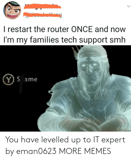 You Have: You have levelled up to IT expert by eman0623 MORE MEMES