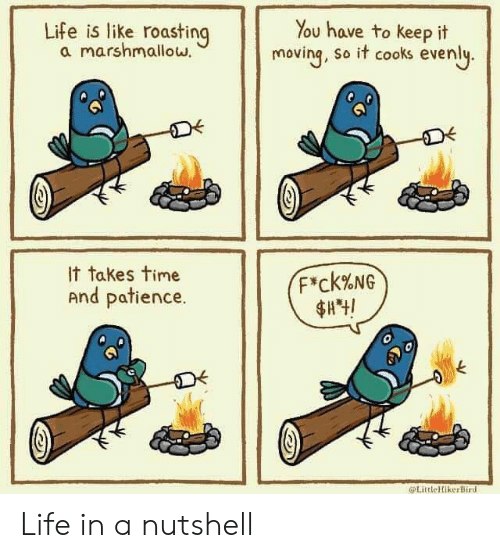 Life, Patience, and Time: You have to keep it  moving, So it cooks evenly.  Life is like roasting  a marshmalloww  It takes time  And patience.  F*ck%NG  $A4!  LittleHikerBird Life in a nutshell