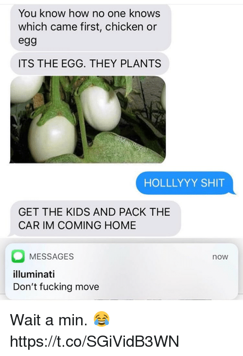 Im Coming Home: You know how no one knows  which came first, chicken or  eg9  ITS THE EGG. THEY PLANTS  HOLLLYYY SHIT  GET THE KIDS AND PACK THE  CAR IM COMING HOME  MESSAGES  illuminati  Don't fucking move  now Wait a min. 😂 https://t.co/SGiVidB3WN