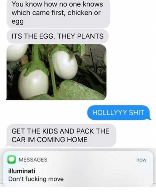 Im Coming Home: You know how no one knows  which came first, chicken or  eg9  ITS THE EGG. THEY PLANTS  HOLLLYYY SHIT  GET THE KIDS AND PACK THE  CAR IM COMING HOME  MESSAGES  illuminati  Don't fucking move  now