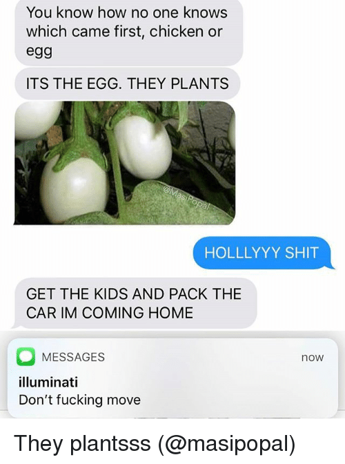 Im Coming Home: You know how no one knows  which came first, chicken or  egg  ITS THE EGG. THEY PLANTS  HOLLLYYY SHIT  GET THE KIDS AND PACK THE  CAR IM COMING HOME  MESSAGES  illuminati  Don't fucking move  now They plantsss (@masipopal)