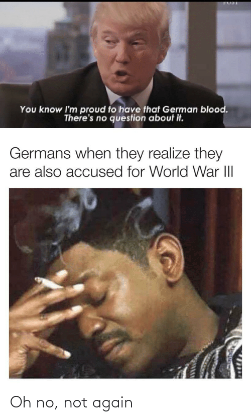 germans: You know I'm proud to have that German blood.  There's no question about it.  Germans when they realize they  are also accused for World War III  1714 Oh no, not again