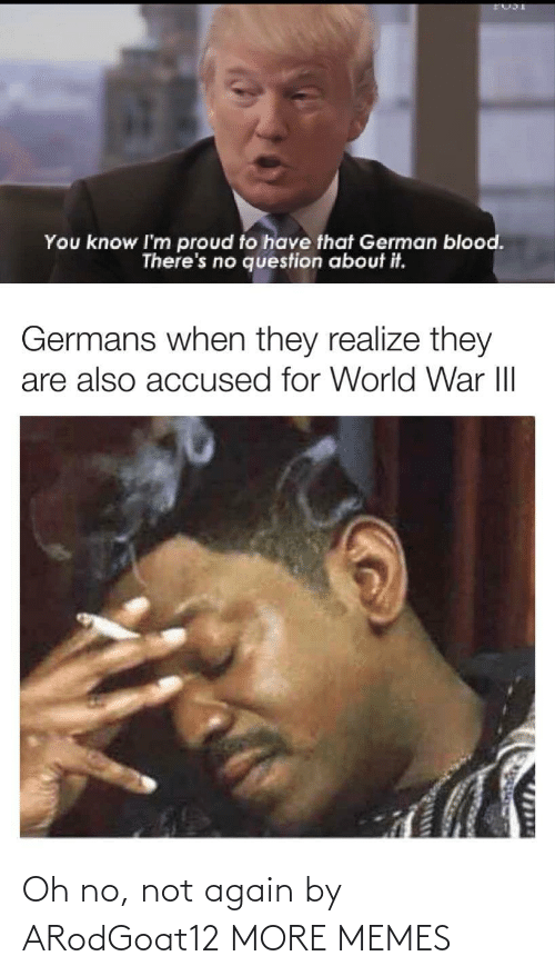 germans: You know I'm proud to have that German blood.  There's no question about it.  Germans when they realize they  are also accused for World War III  1714 Oh no, not again by ARodGoat12 MORE MEMES