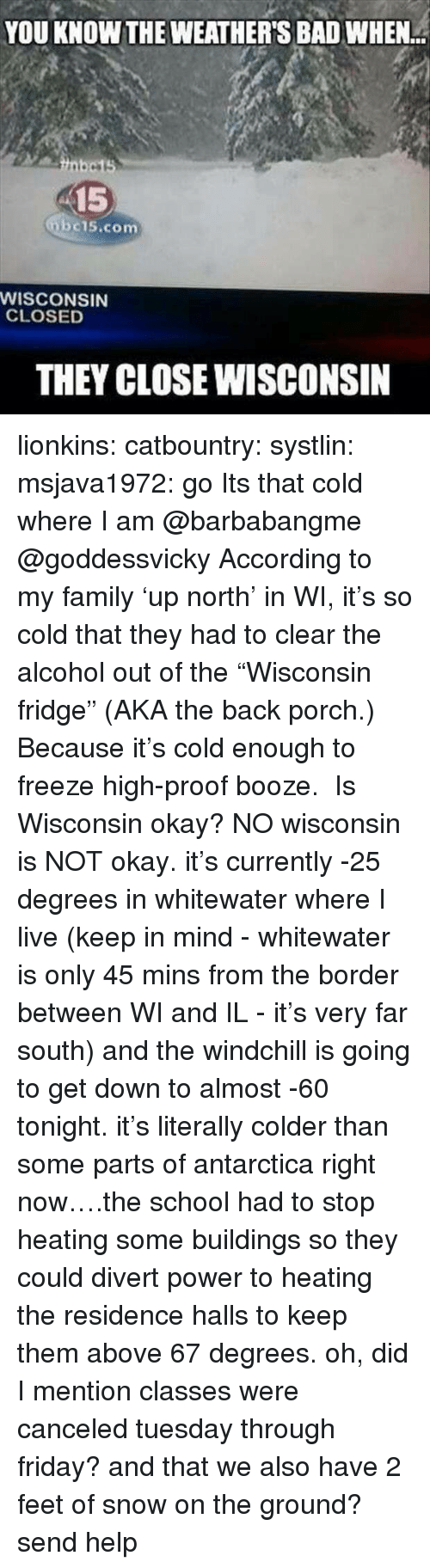 """Antarctica: YOU KNOW THE WEATHER'S BAD WHEN  15  bc15.com  WISCONSIN  CLOSED  THEY CLOSE WISCONSIN lionkins:  catbountry:  systlin:  msjava1972:  go Its that cold where I am @barbabangme @goddessvicky  According to my family'up north' in WI, it's so cold that they had to clear the alcohol out of the""""Wisconsin fridge"""" (AKA the back porch.) Because it's cold enough to freeze high-proof booze.  Is Wisconsin okay?  NO wisconsin is NOT okay. it's currently -25 degrees in whitewater where I live (keep in mind - whitewater is only 45 mins from the border between WI and IL - it's very far south) and the windchill is going to get down to almost -60 tonight. it's literally colder than some parts of antarctica right now….the school had to stop heating some buildings so they could divert power to heating the residence halls to keep them above 67 degrees. oh, did I mention classes were canceled tuesday through friday? and that we also have 2 feet of snow on the ground?send help"""